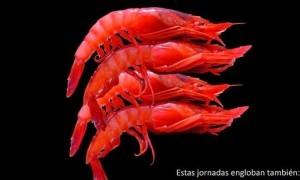 Jornadas Gastronómicas de la Gamba Roja