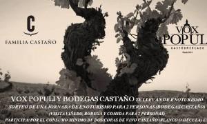 Sorteo: Jornada de enoturismo en Bodegas Castaño