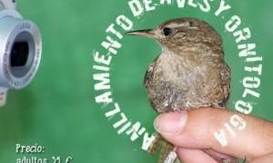 Programa del curso sobre anillamiento de aves y ornitología