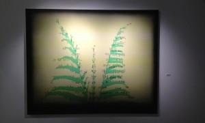 Exposición del XIV Premio de Pintura Artes Plásticas