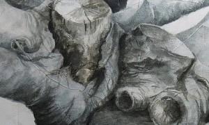 Exposición de pintura: Inventario